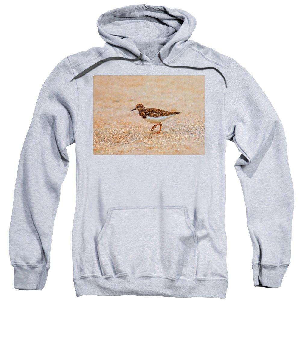 Beach Sweatshirt featuring the photograph Portrait Of The Ruddy Turnstone by John M Bailey