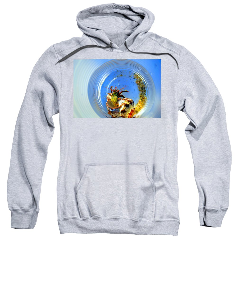 Shellfish Sweatshirt featuring the photograph Posing Before Release by Zafer Gurel
