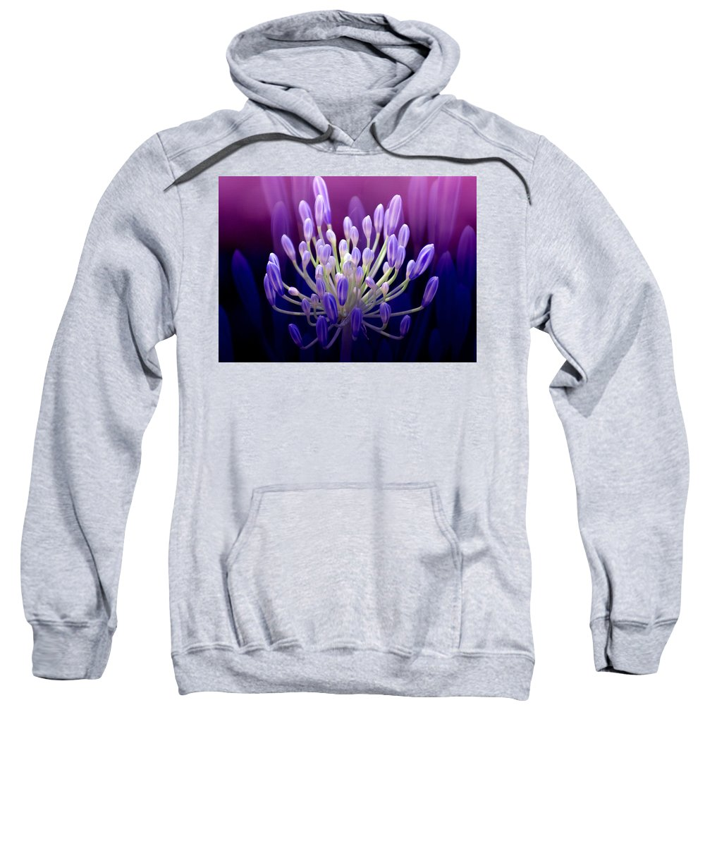 Agapanthus Sweatshirt featuring the photograph Praise by Holly Kempe