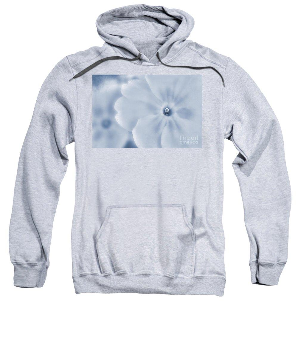 Primula Vulgaris Sweatshirt featuring the photograph Primrose Cyanotype by John Edwards