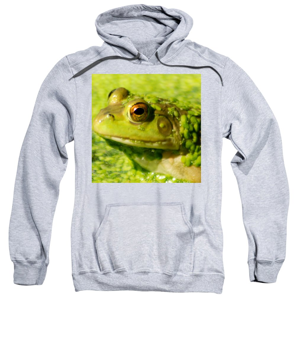 Green Algae Sweatshirt featuring the photograph Profiling Frog by Optical Playground By MP Ray