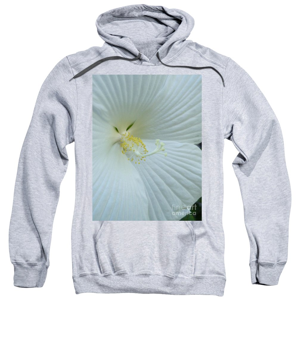Flower Macro Sweatshirt featuring the photograph Pure And Sensual by Lingfai Leung