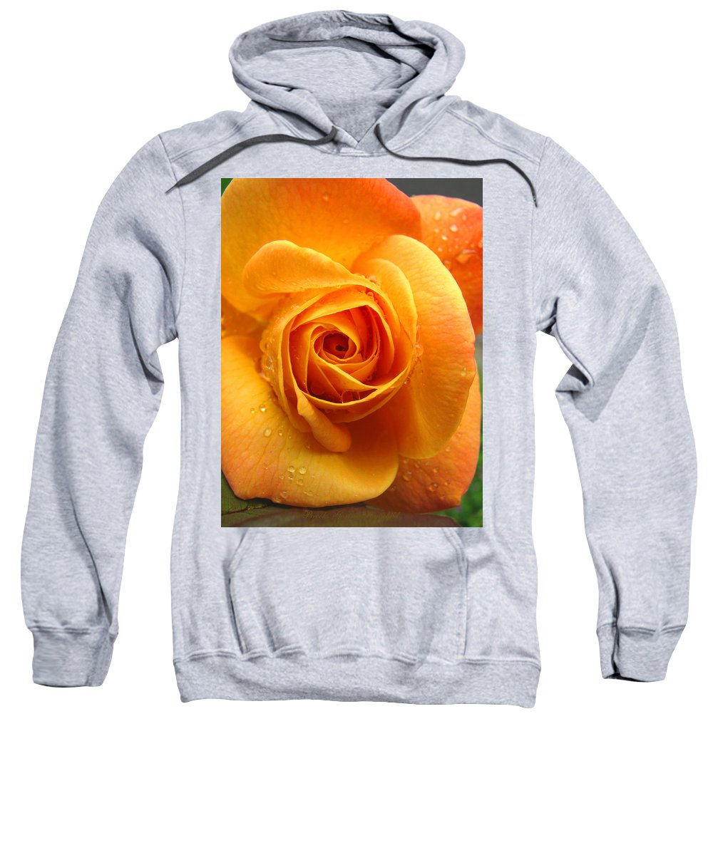 Yellow Flowers Sweatshirt featuring the photograph Pure Gold - Roses From The Garden by Brooks Garten Hauschild