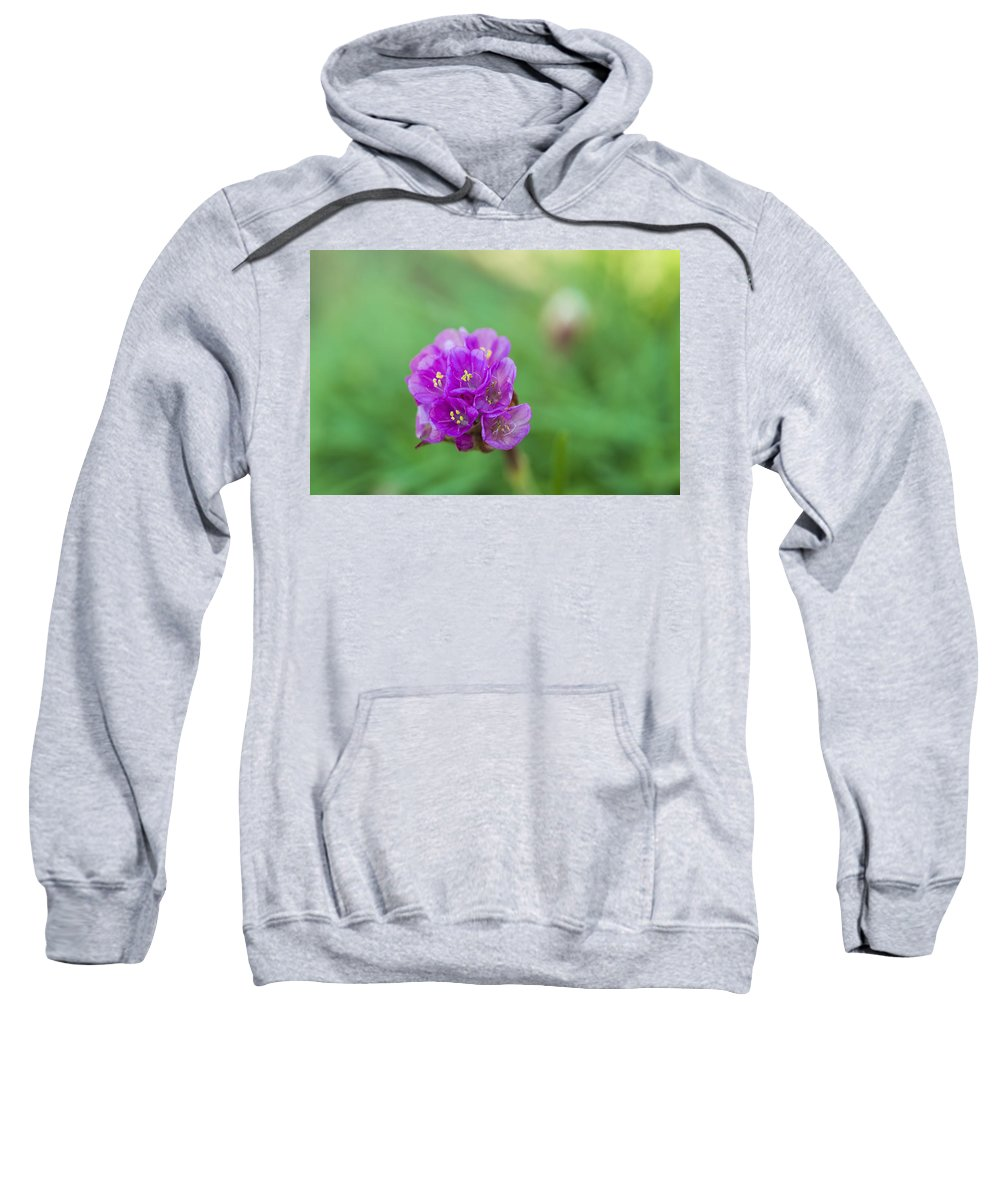 Nature Sweatshirt featuring the photograph Purple Flower by Paulo Goncalves