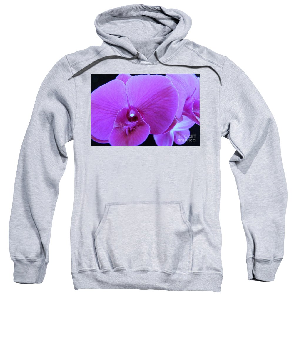 Purple Sweatshirt featuring the photograph Purple Orchid 7 by Mary Deal