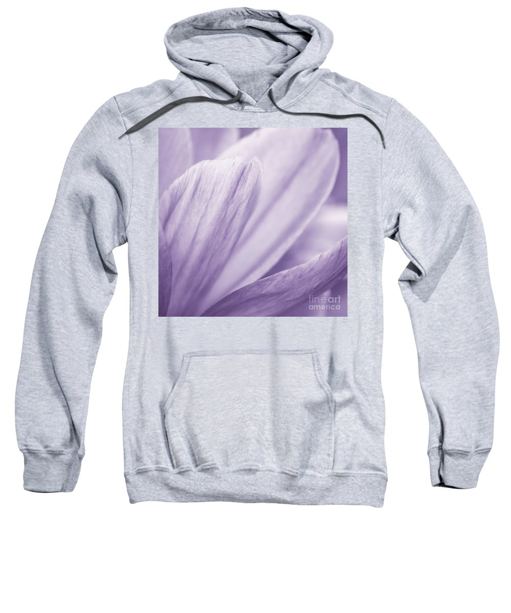 Purple Floral Photography Prints Sweatshirt featuring the photograph Purple Petals by Lucid Mood