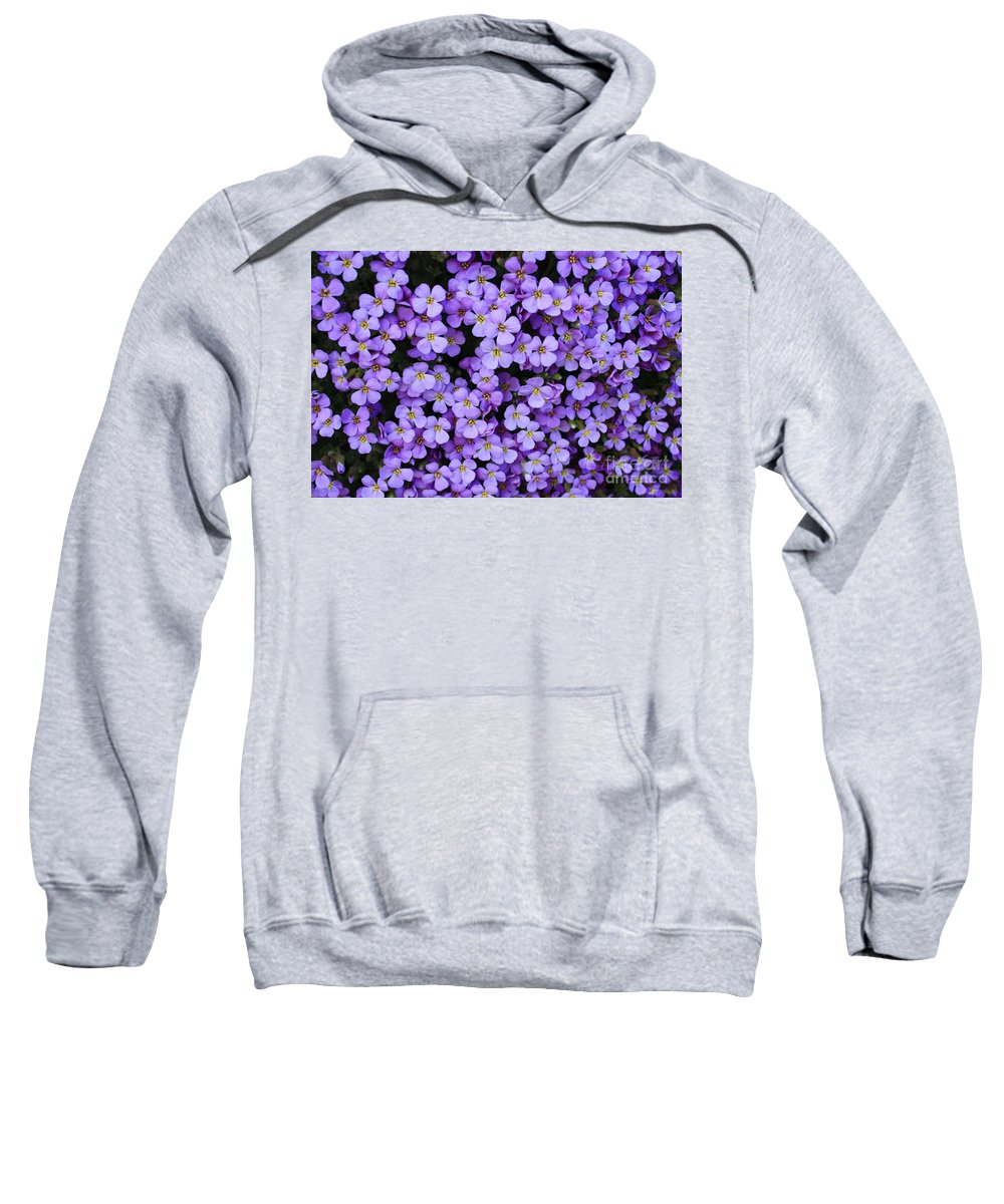 Rockcress Sweatshirt featuring the photograph Purple Rockcress by Carol Groenen