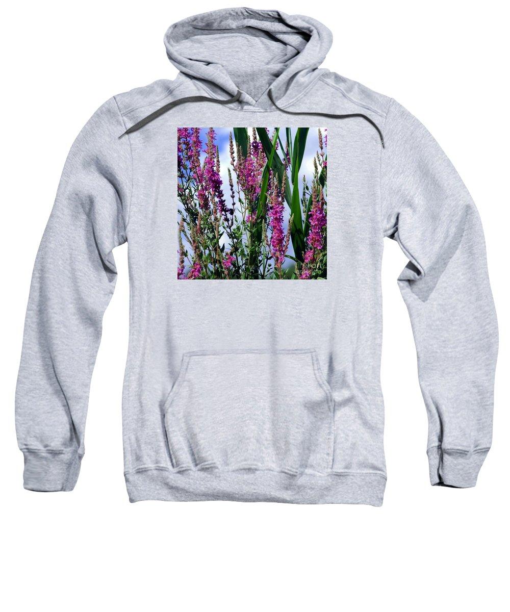 Purple Sweatshirt featuring the photograph Purple Wildflowers by Kathleen Struckle