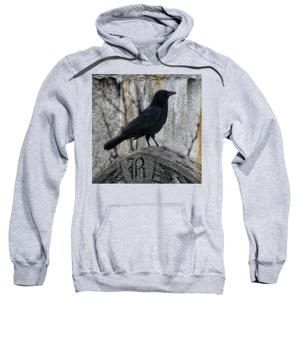 Raven Sweatshirt featuring the photograph R Is For Raven by Gothicrow Images