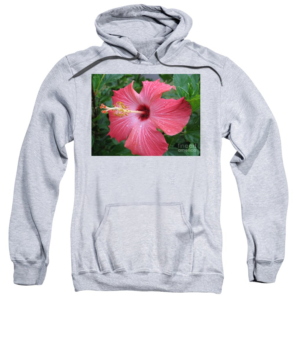 Hibiscus Sweatshirt featuring the photograph Rain Soaked Hibiscus by Christiane Schulze Art And Photography
