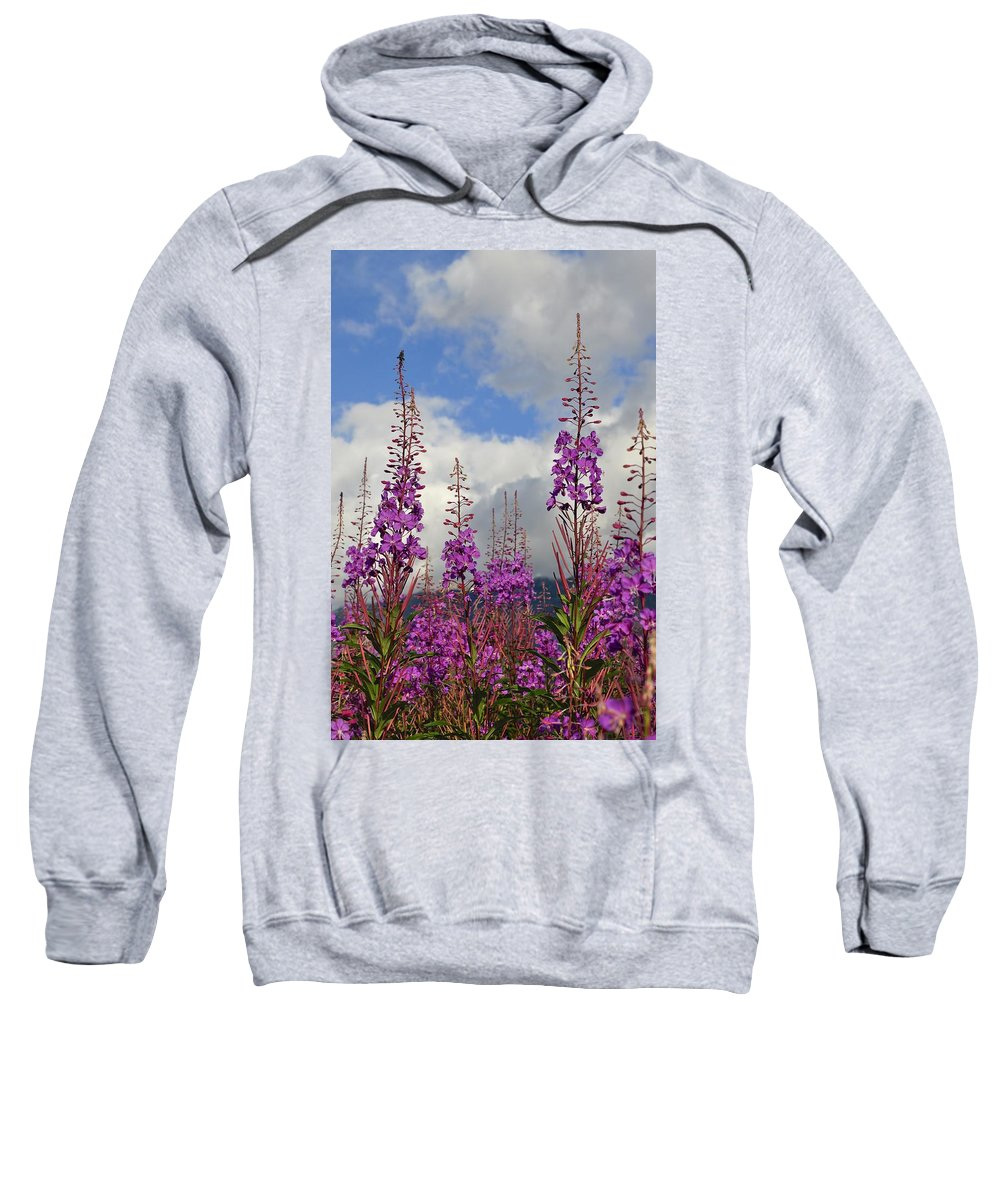 Fireweed Sweatshirt featuring the photograph Reach For The Sky by Cathy Mahnke