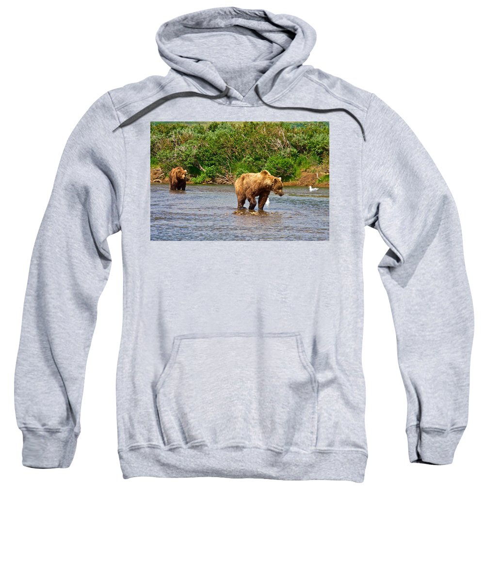 Ready To Pounce On A Salmon Sweatshirt featuring the photograph Ready To Pounce On A Salmon In The Moraine River In Katmai National Preserve-ak by Ruth Hager