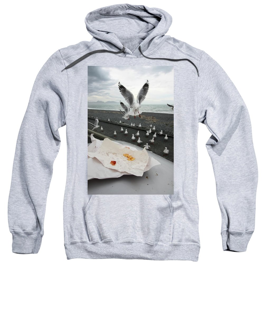 Gull Sweatshirt featuring the photograph Red-billed Seagulls by Amanda Stadther