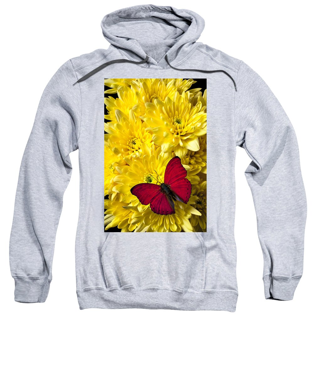 Red Butterfly Poms Sweatshirt featuring the photograph Red Butterfly On Poms by Garry Gay