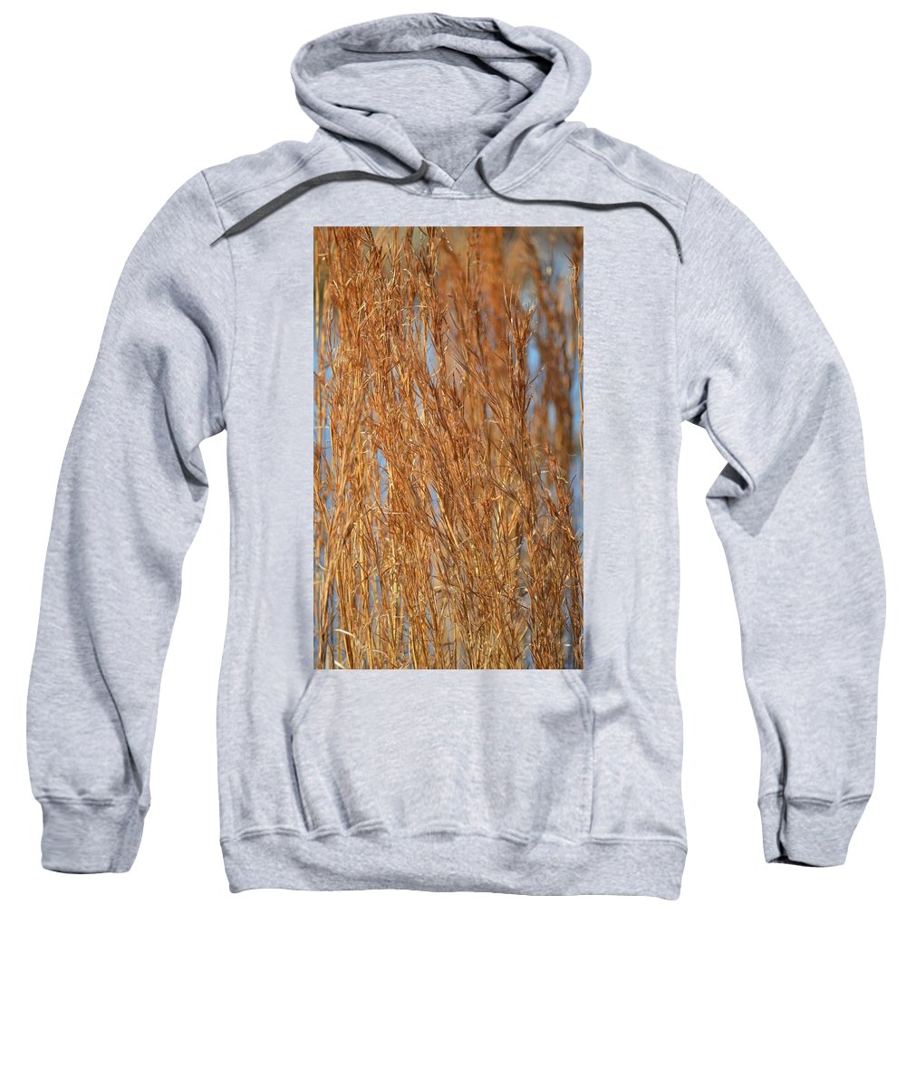 Red Gold Sweatshirt featuring the photograph Red Gold by Maria Urso