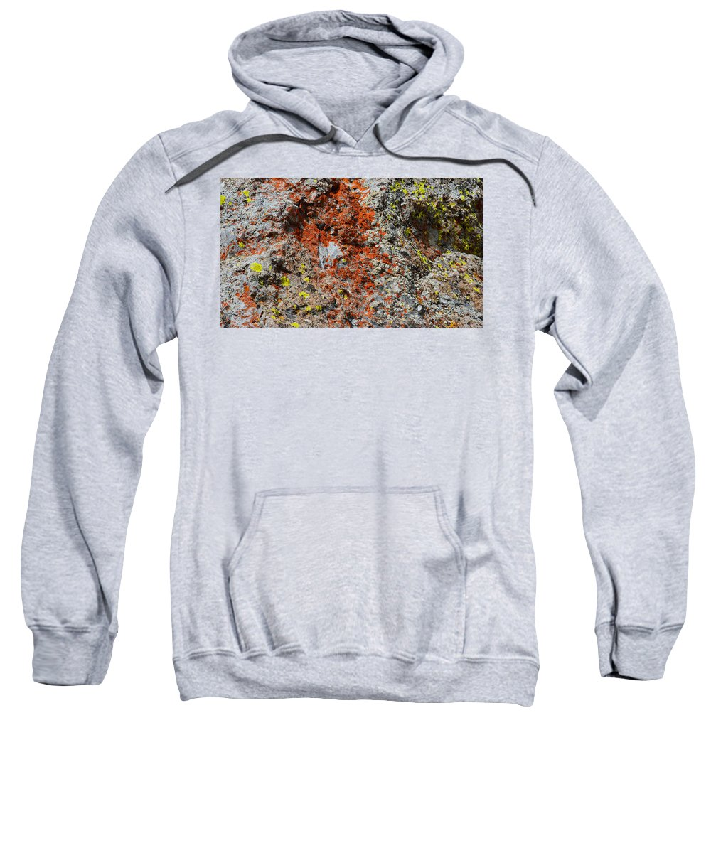 Nature Sweatshirt featuring the photograph Red With Green by Brent Dolliver