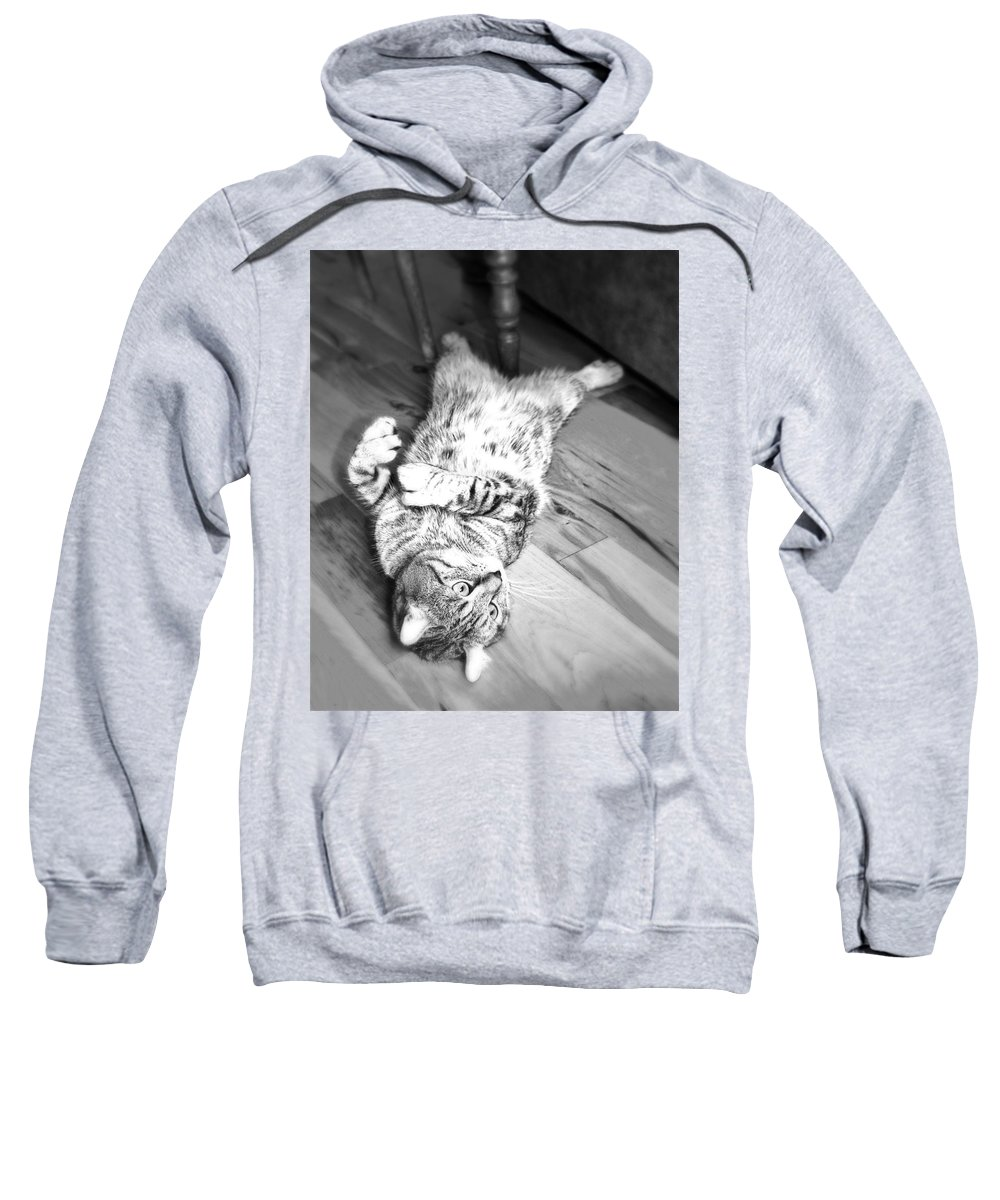A Highlander Lynx Cat Lying On His Back On The Floor. Sweatshirt featuring the photograph Relaxing Cat by Susan Leggett