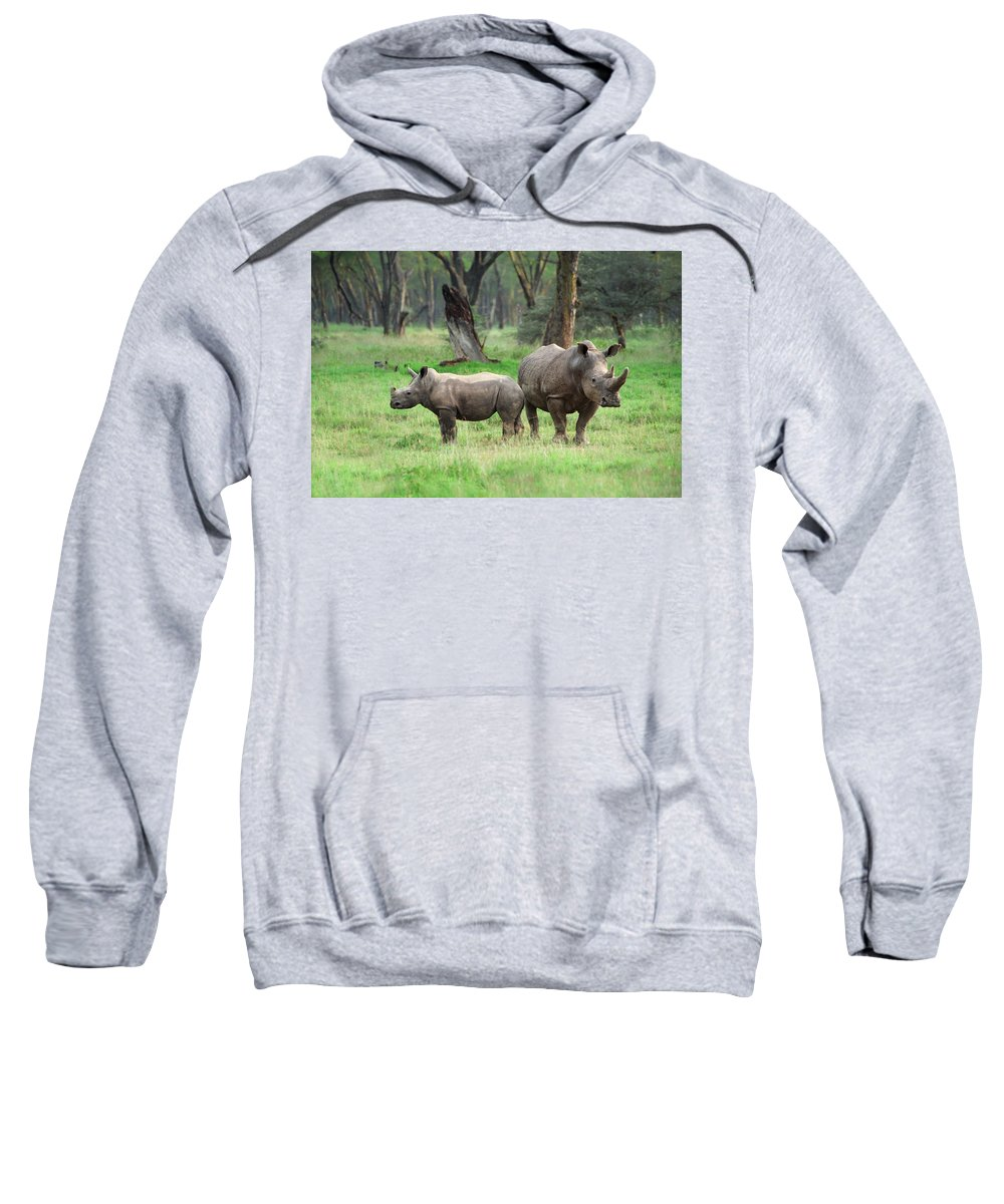 Africa Sweatshirt featuring the photograph Rhino Family by Sebastian Musial