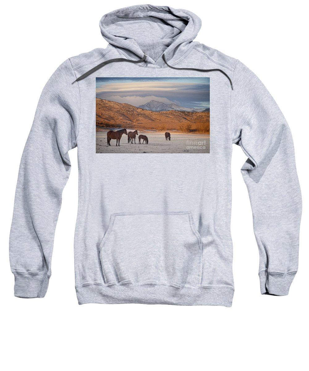 Horses; Horse; Country; Rustic; Mountains; rocky Mountains; Colorado; boulder County Landscapes; Snow; Winter; Sweatshirt featuring the photograph Rocky Mountain Country Morning by James BO Insogna