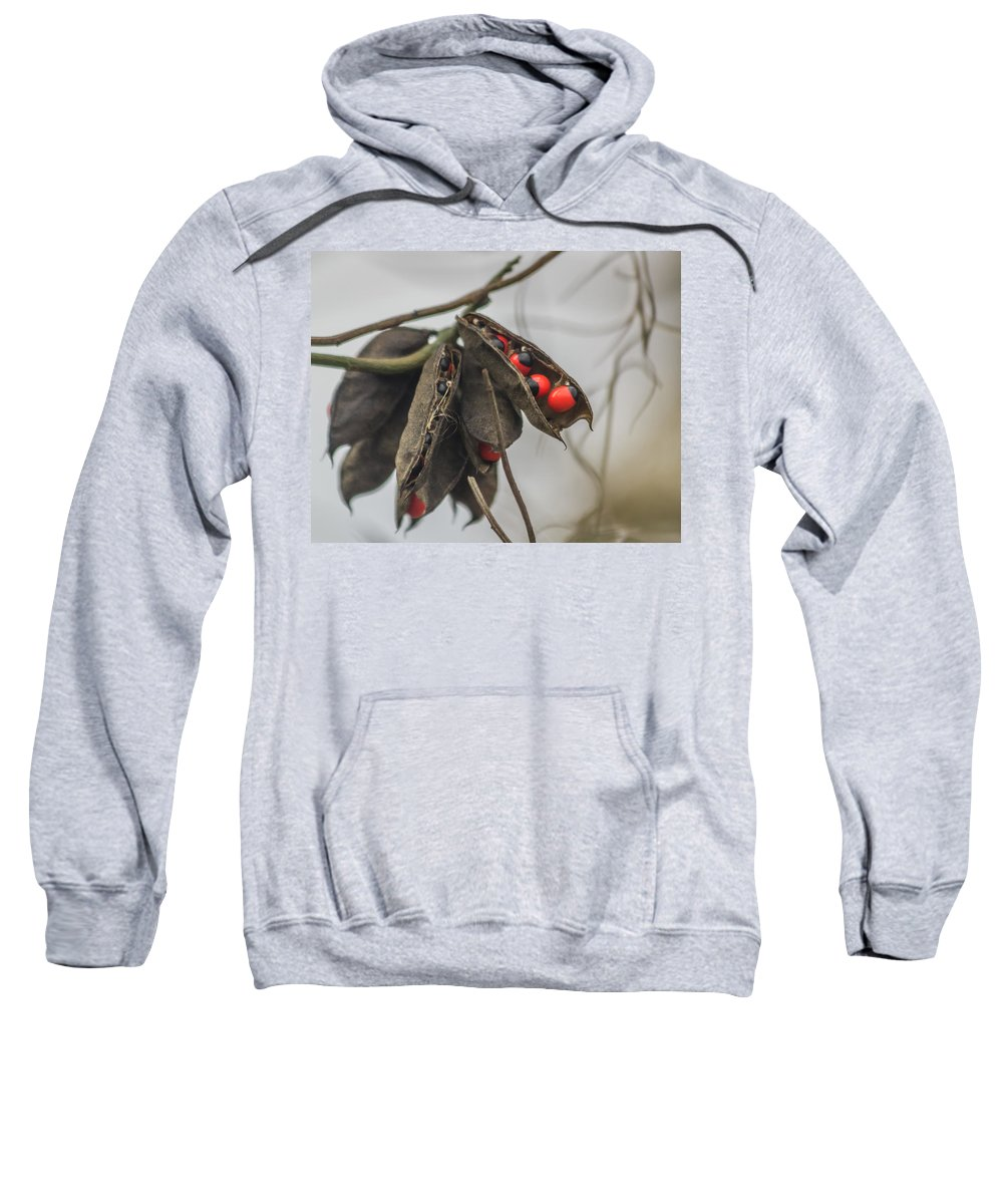 Circle B Bar Reserve Sweatshirt featuring the photograph Rosary Pea by Jane Luxton