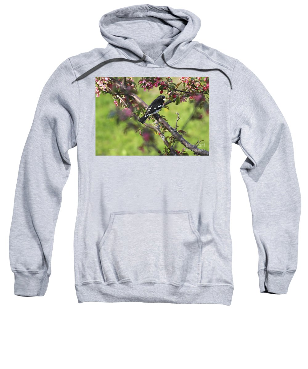 Bird Sweatshirt featuring the photograph Rose Breasted Grosbeak by Deborah Benoit