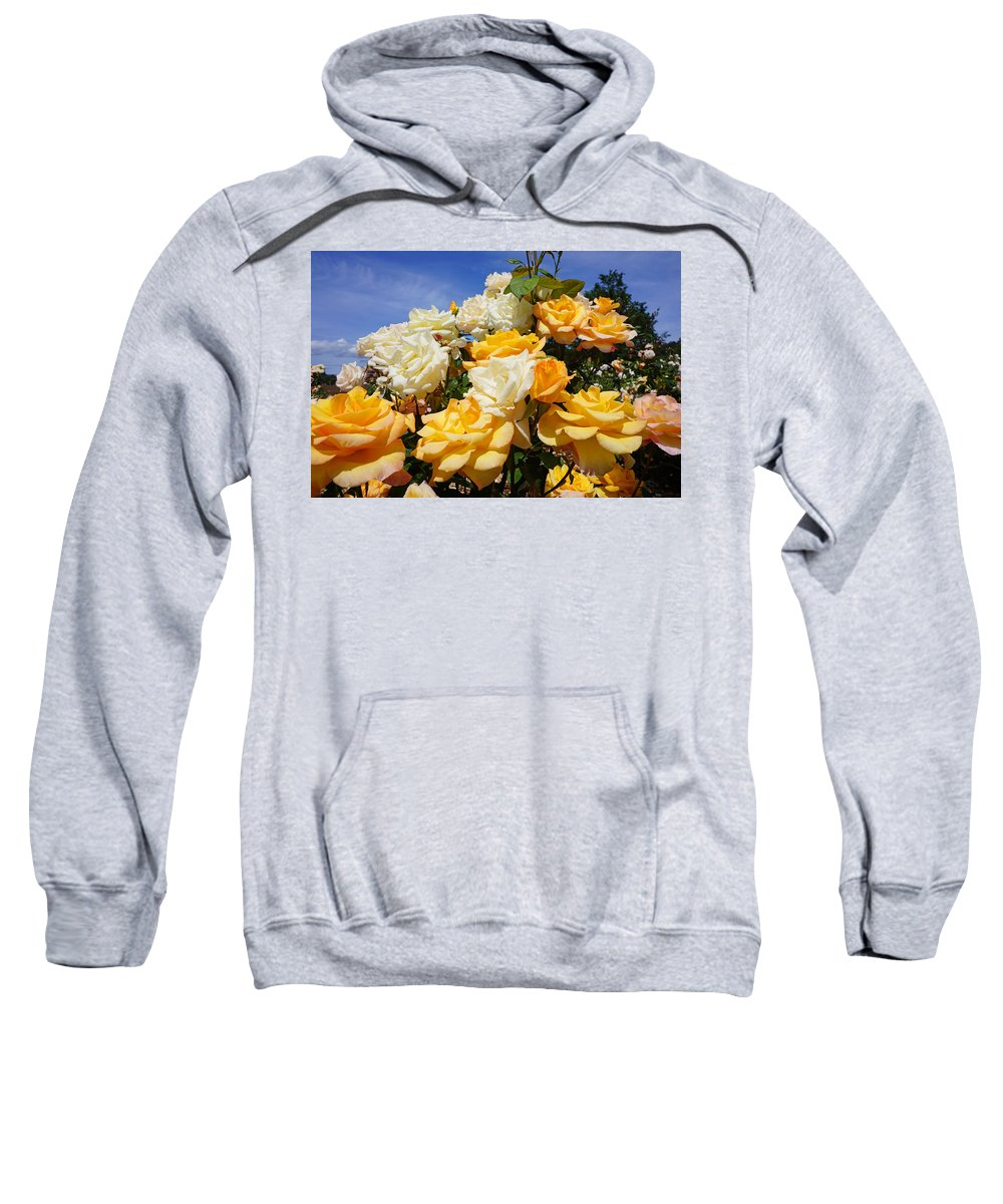 Yellow Sweatshirt featuring the photograph Rose Garden Art Prints Yellow Orange Rose Flowers by Baslee Troutman