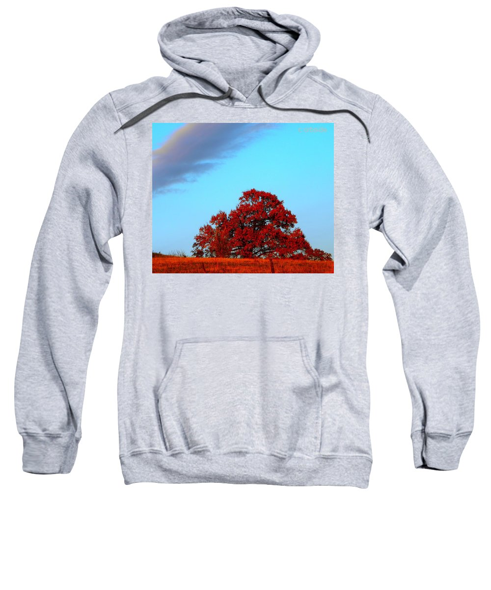 Landscape Sweatshirt featuring the photograph Rural Route by Chris Berry
