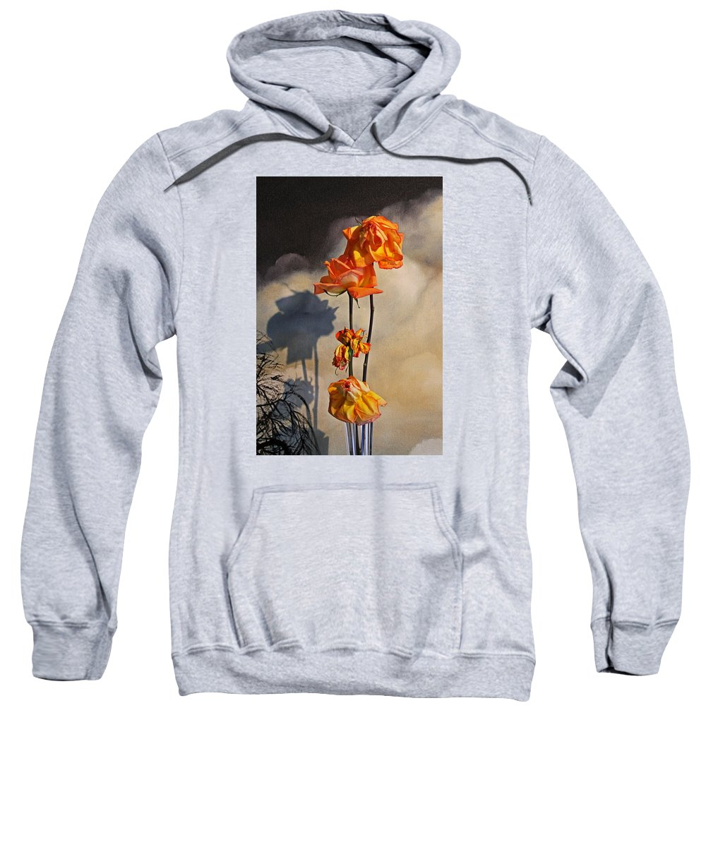 Roses Sweatshirt featuring the photograph Sad To See You Go by John Stuart Webbstock