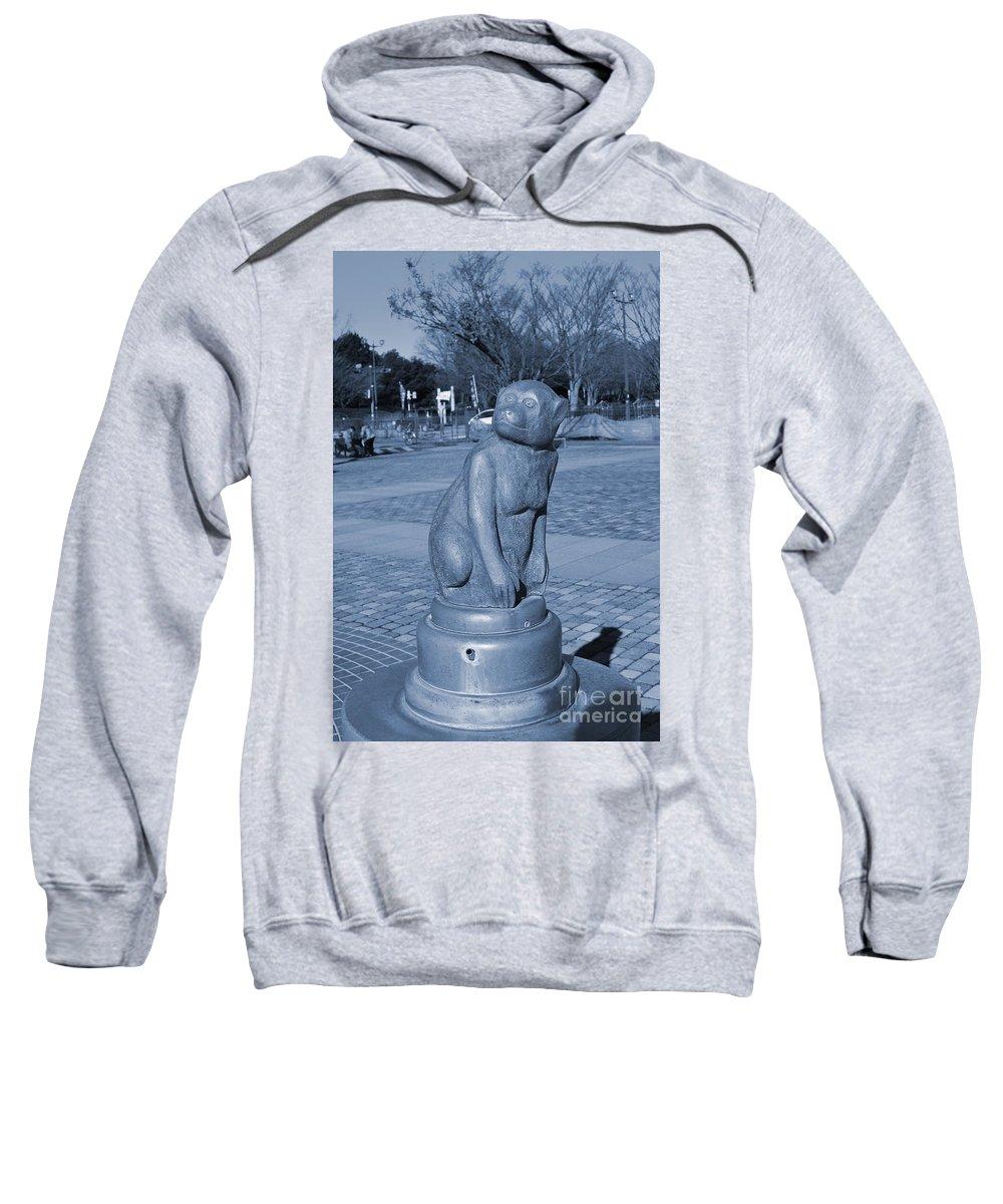 Park Sweatshirt featuring the photograph Sagamihara Asamizo Park 7e by Jay Mann
