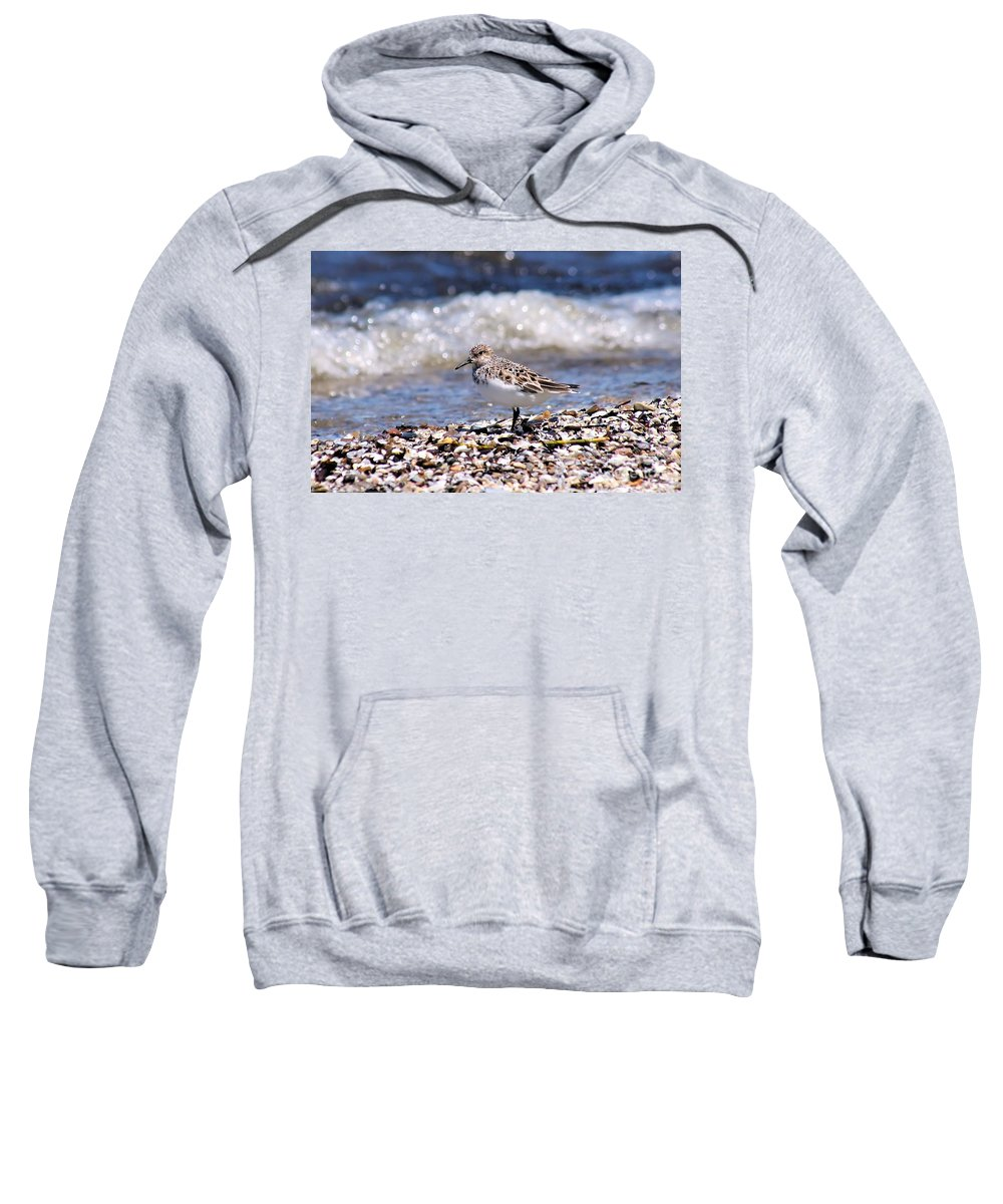 Sanderling Sweatshirt featuring the photograph Sanderling Wave Watching by Patti Smith