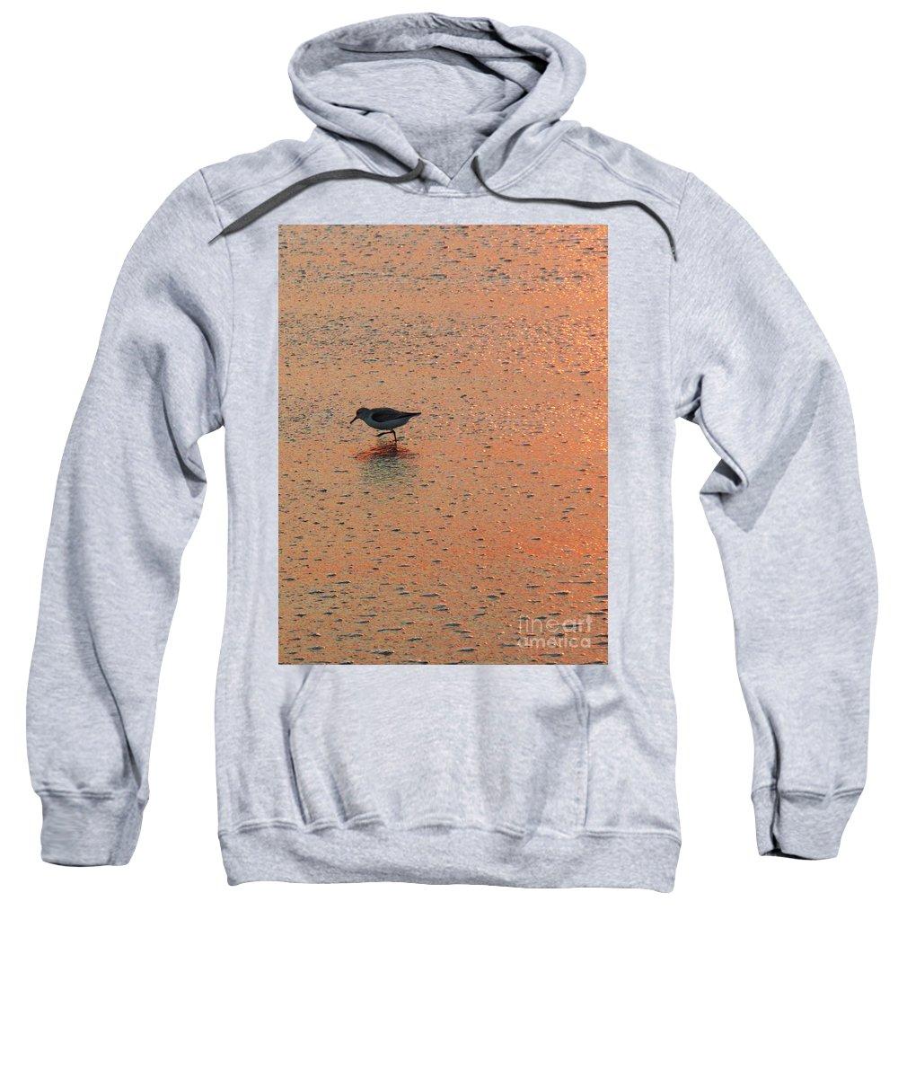 Beach Sweatshirt featuring the photograph Sandpiper On Shoreline by Eric Schiabor