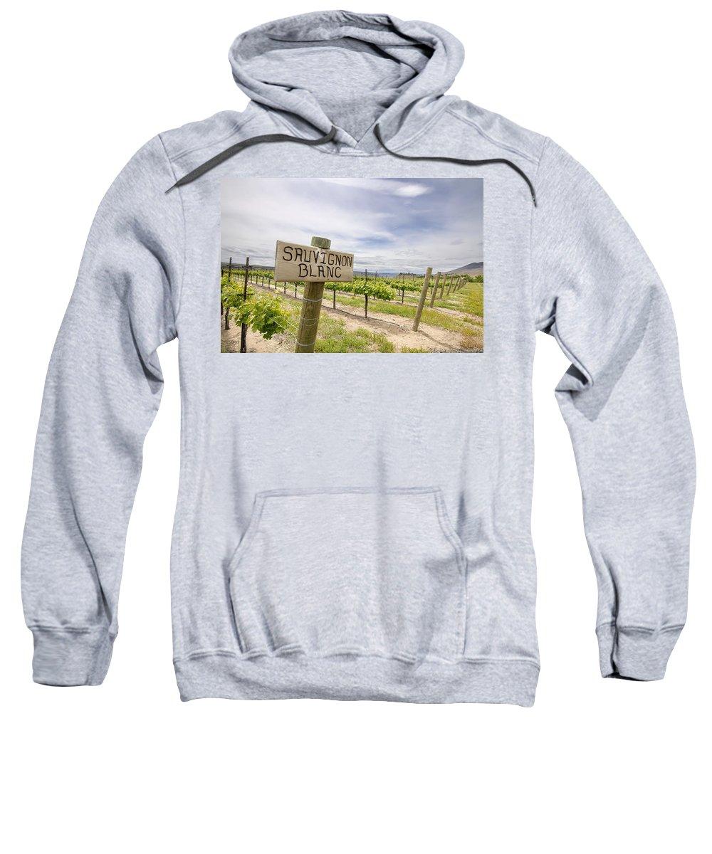 Sauvignon Sweatshirt featuring the photograph Sauvignon Blanc Grapes Growing In Vineyard by Jit Lim