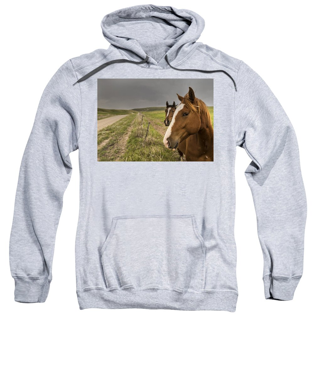 Sandhills Sweatshirt featuring the photograph Say There by Rebecca Akporiaye