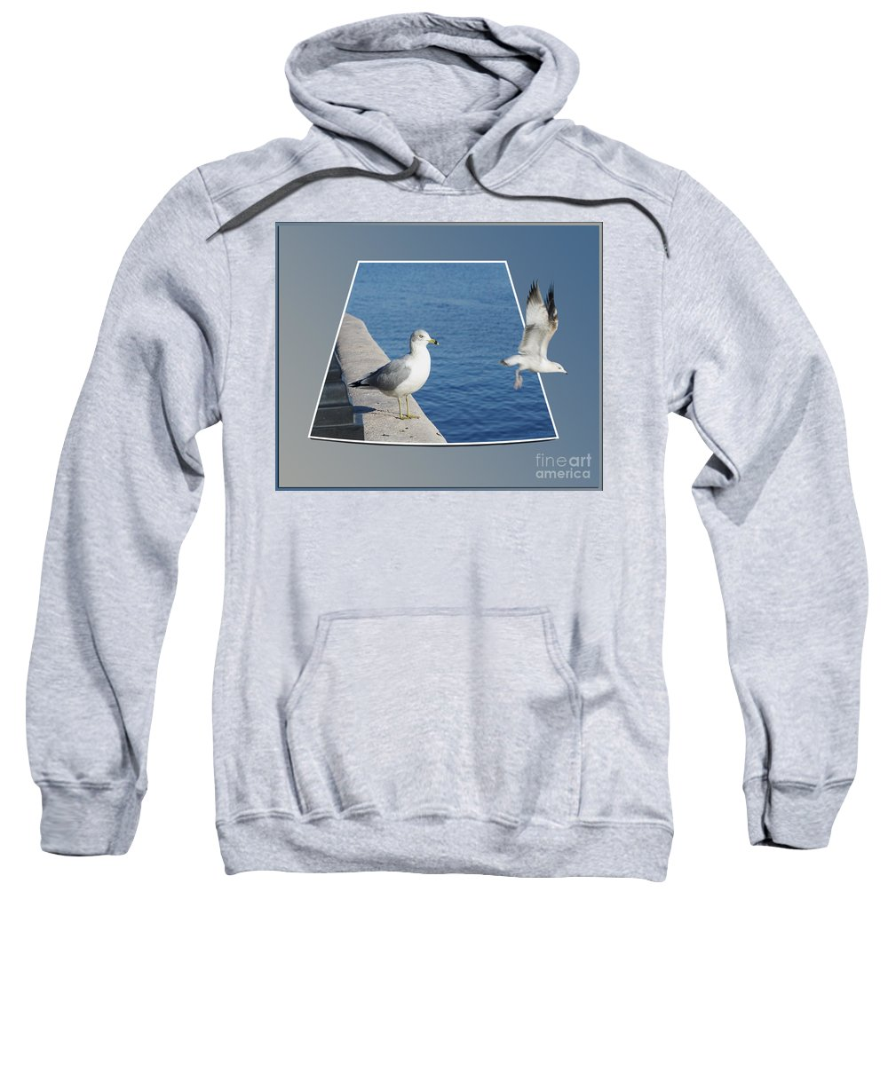 Seagull Sweatshirt featuring the photograph Sea Gull Away Out Of Bounds by Thomas Woolworth