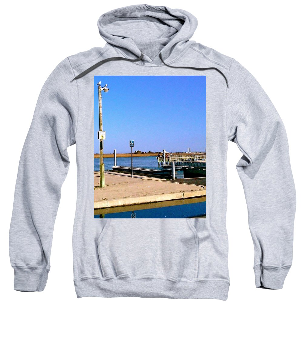 Seagulls Sweatshirt featuring the photograph Sea Gulls Watching Over The Wetlands by Chris W Photography AKA Christian Wilson