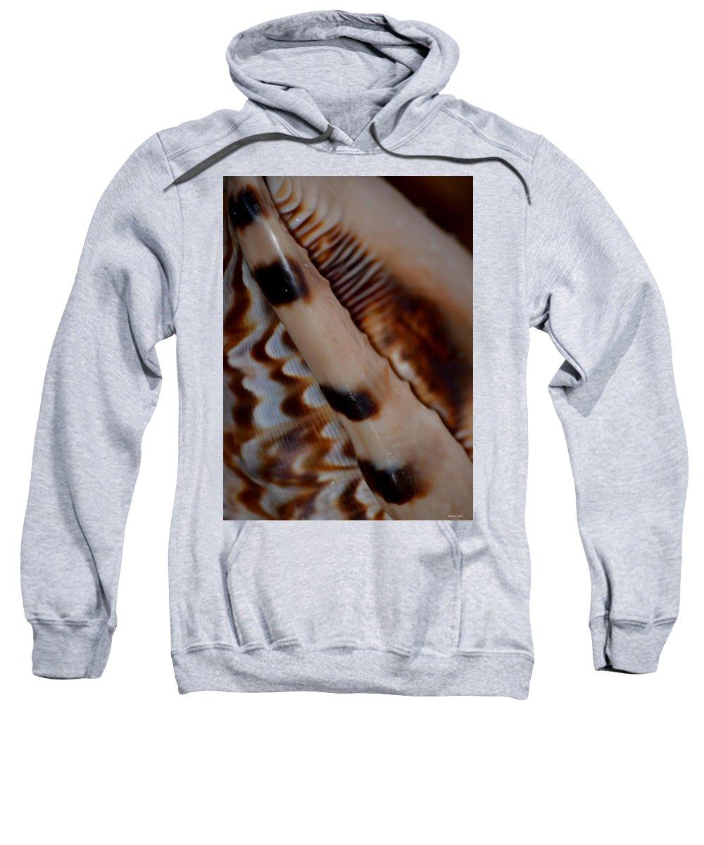 Seashell Abstract 2 Sweatshirt featuring the photograph Seashell Abstract 2 by Maria Urso