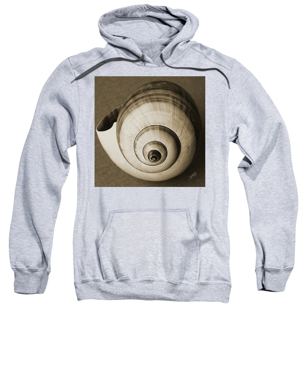 Seashell Sweatshirt featuring the photograph Seashells Spectacular No 25 by Ben and Raisa Gertsberg
