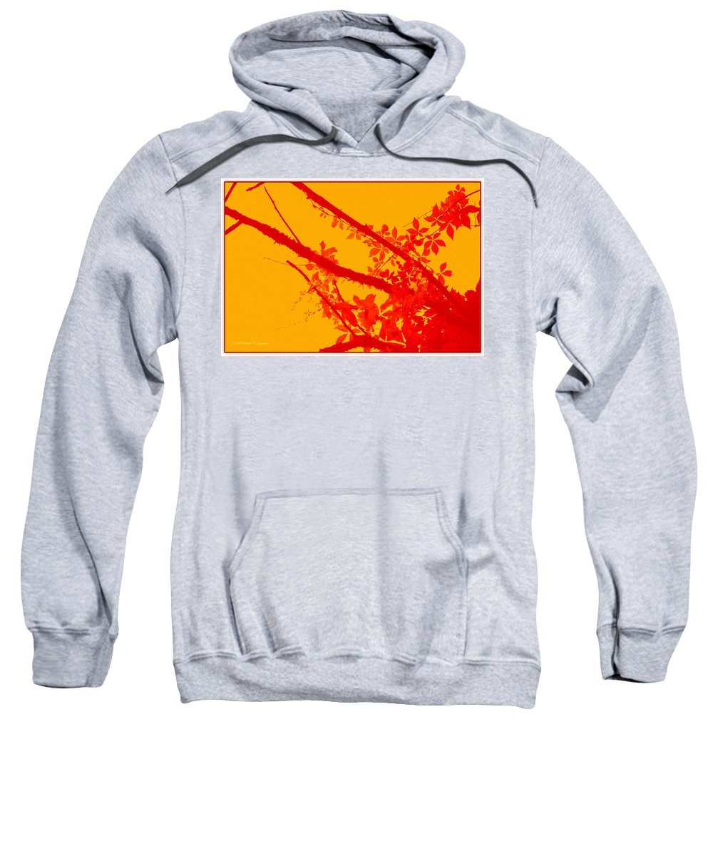 Digital Art Sweatshirt featuring the digital art Season Of Colours by Sonali Gangane