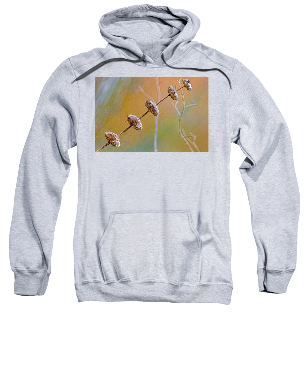 Seed Pod Sweatshirt featuring the photograph Seed Pod Pagoda by Gary Holmes