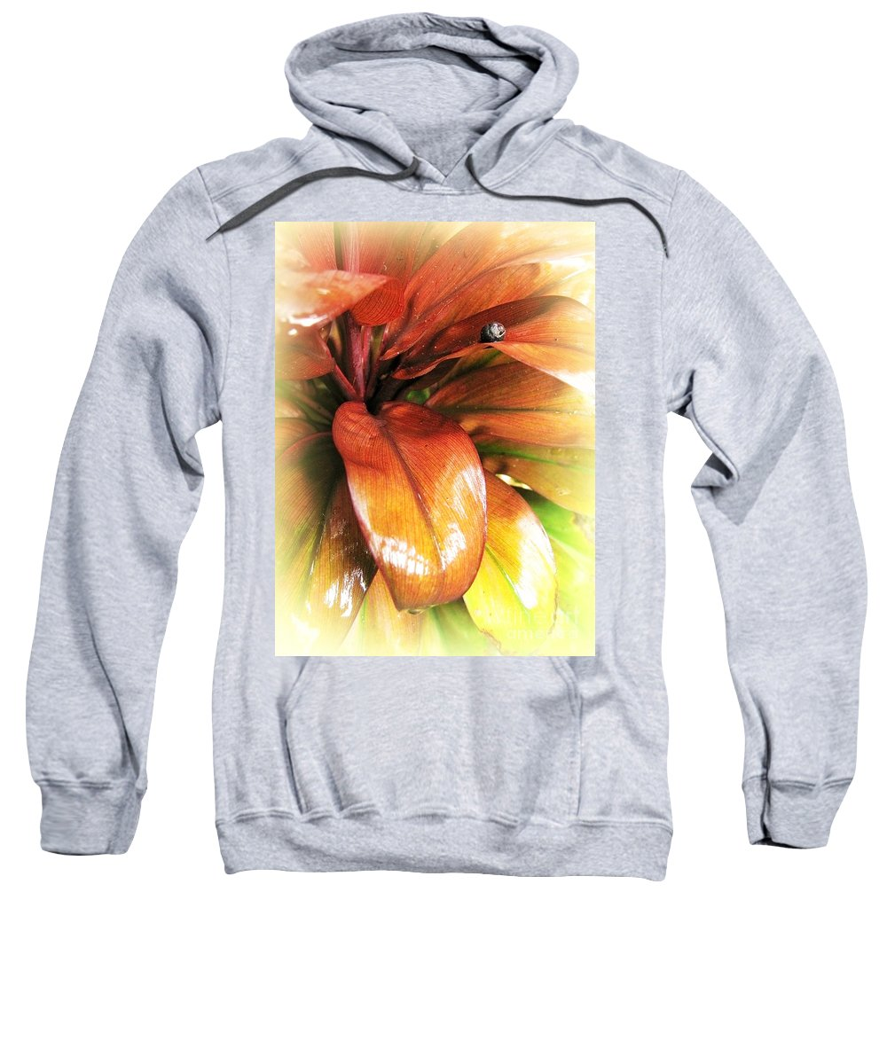 Tropical Sweatshirt featuring the photograph Shapes Of Hawaii 6 by Ellen Cotton