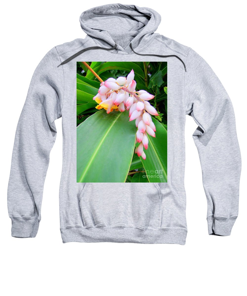 Shell Ginger Sweatshirt featuring the photograph Shell Ginger by Mary Deal