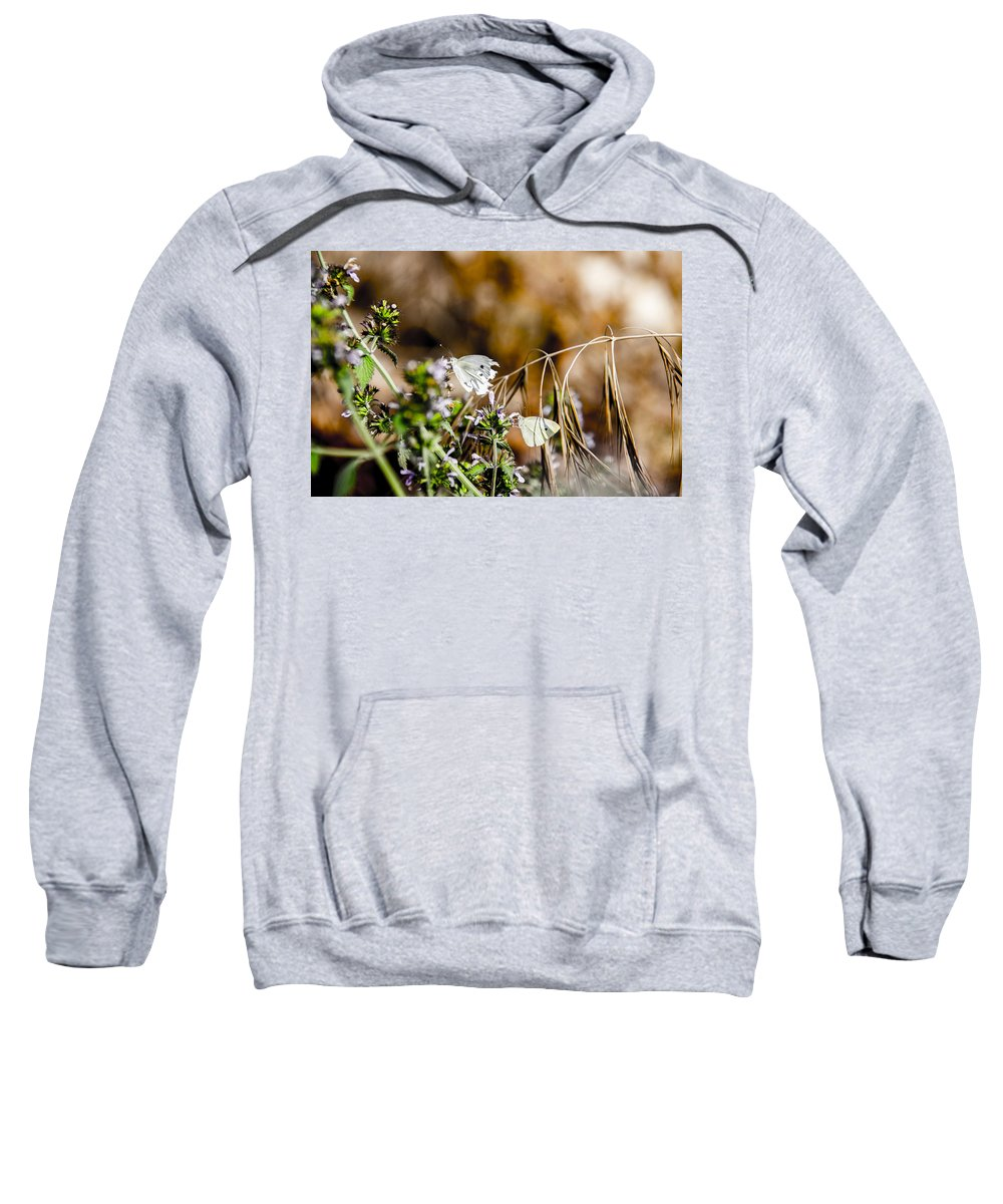 This Is Mine Sweatshirt featuring the photograph Shoo This Is Mine by Sotiris Filippou