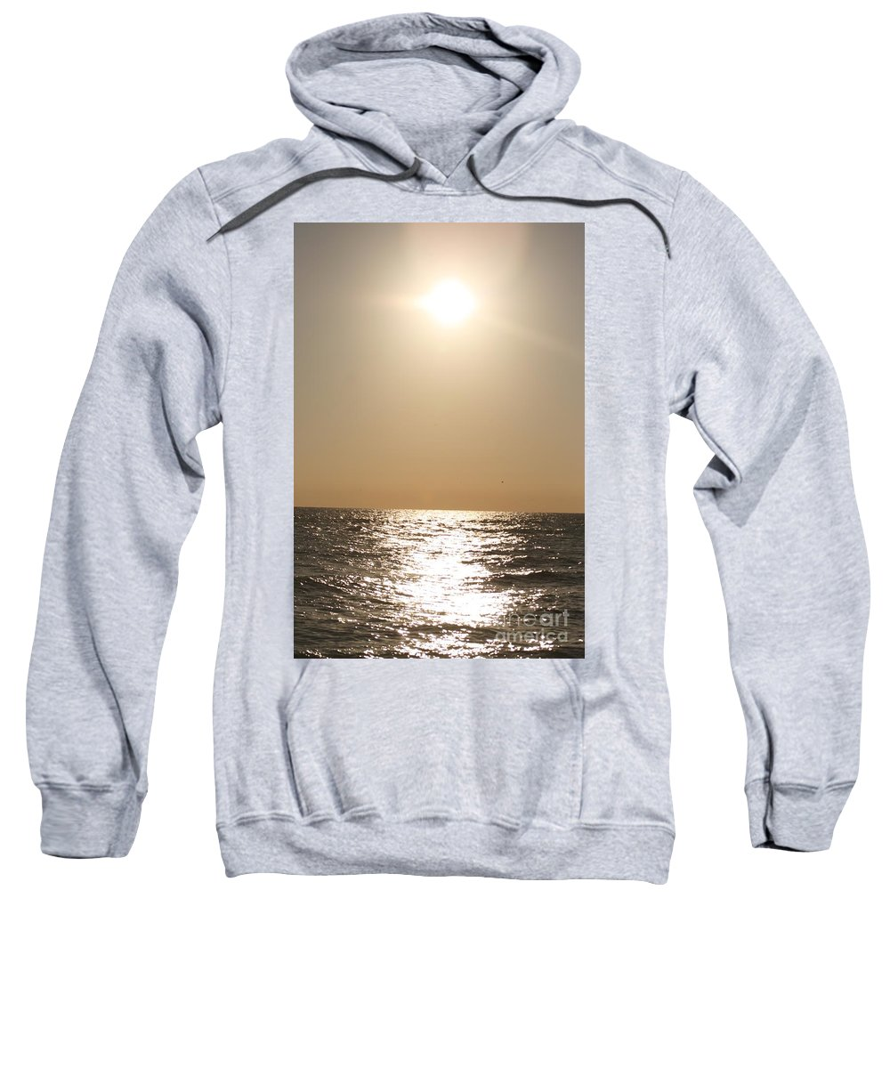 Silver Sweatshirt featuring the photograph Silver And Gold by Nadine Rippelmeyer