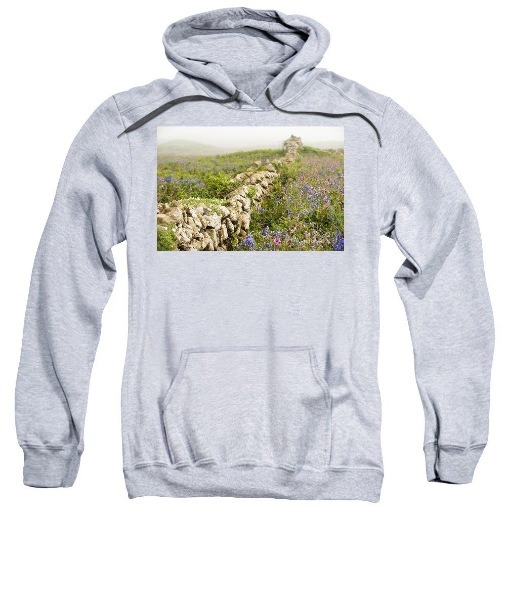 Aquilinum Sweatshirt featuring the photograph Skomer Wildflowers by Anne Gilbert