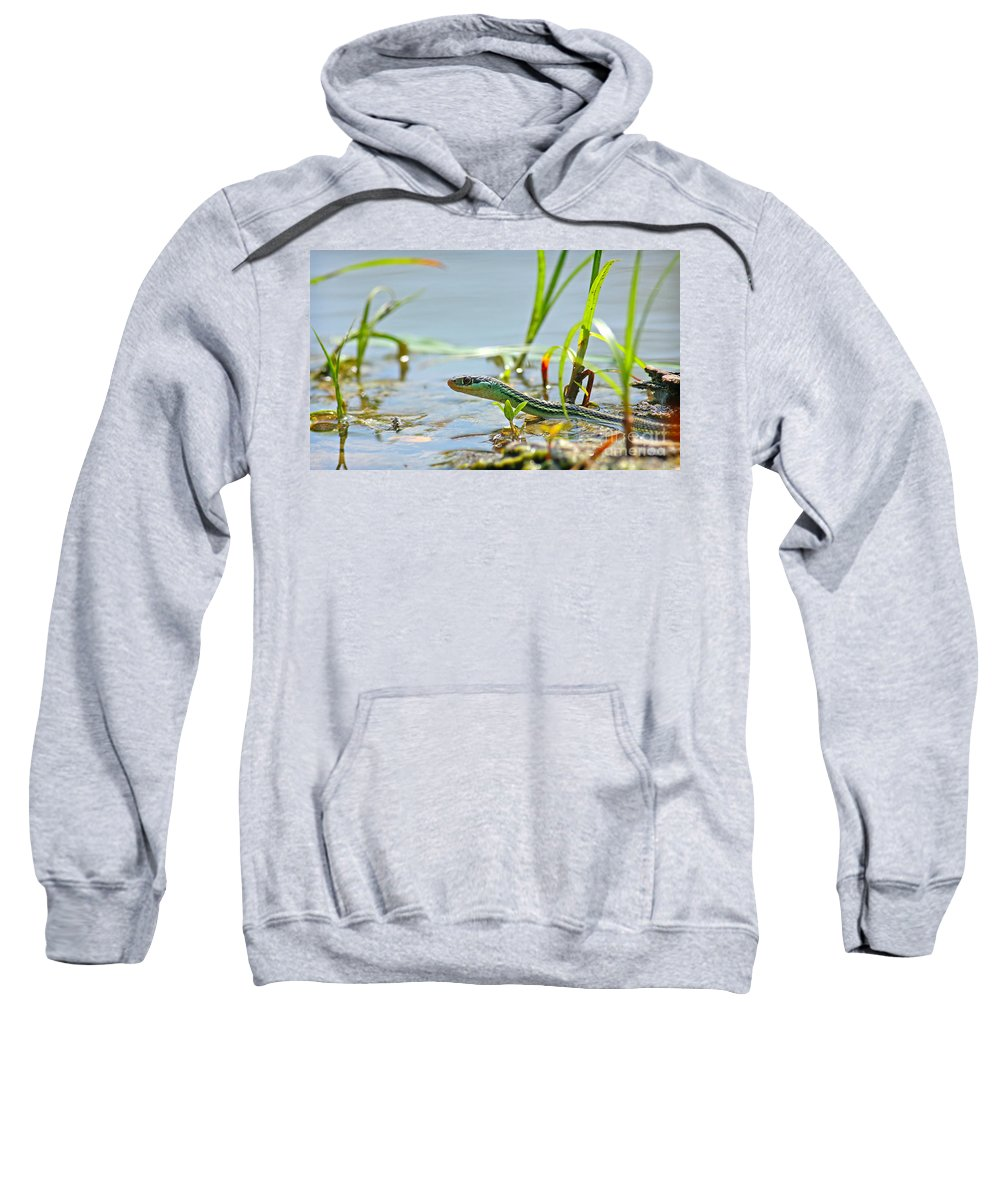 Ribbon Snake Sweatshirt featuring the pyrography Slither by David Cutts