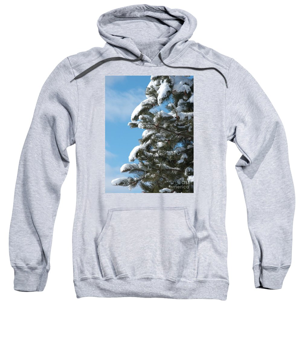 Snow Sweatshirt featuring the photograph Snow-clad Pine by Ann Horn