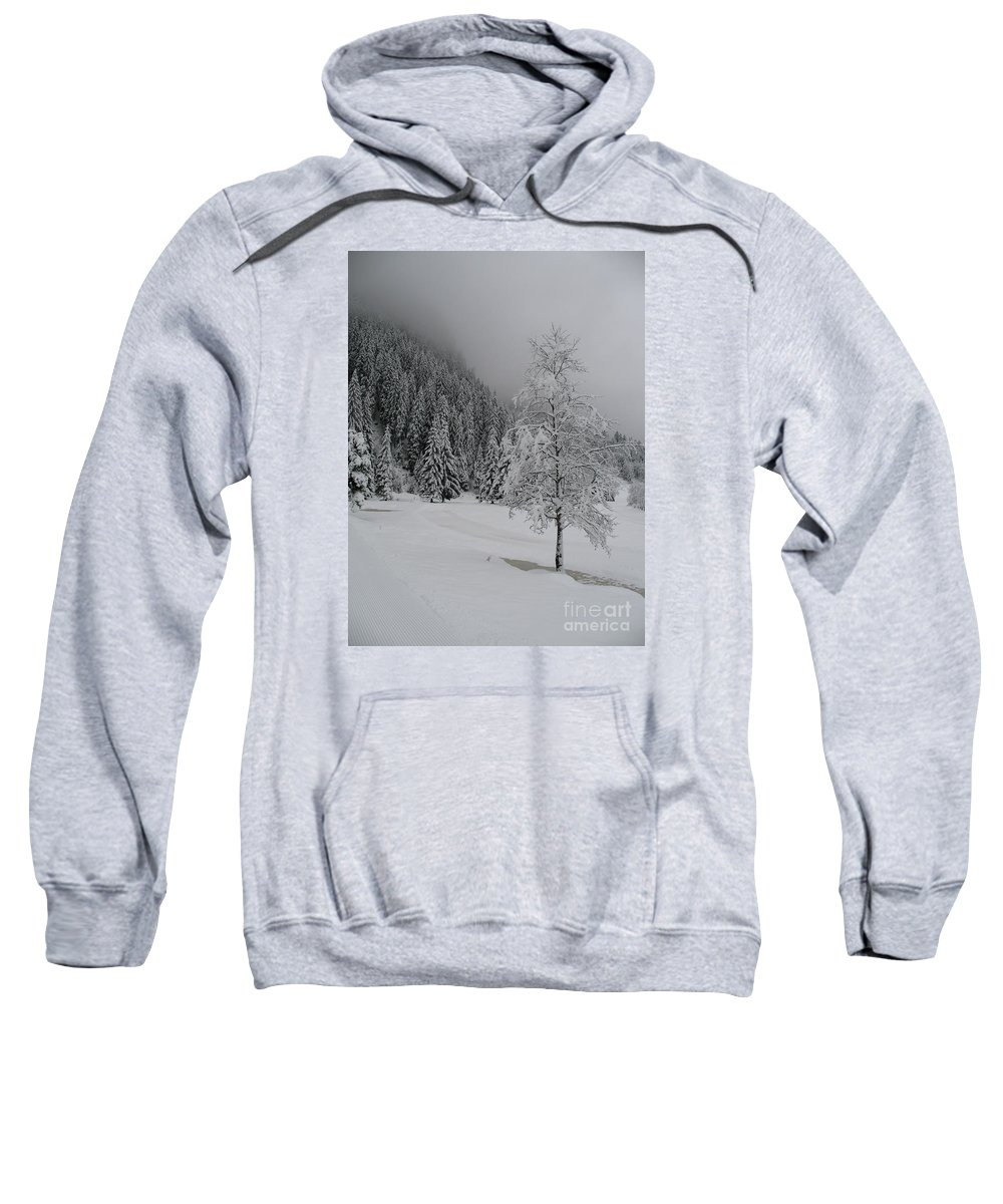 Snow Sweatshirt featuring the photograph Snow Tree by Christiane Schulze Art And Photography