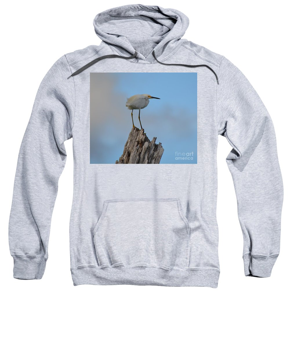 Snowy Sweatshirt featuring the photograph Snowy Perched Against A Bright Blue Sky by Patricia Twardzik