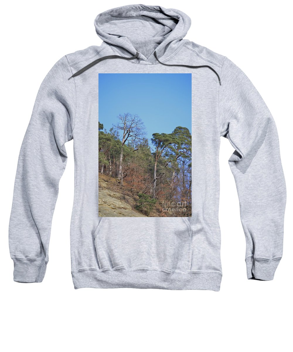 Nature Sweatshirt featuring the photograph Solid Ground by Felicia Tica