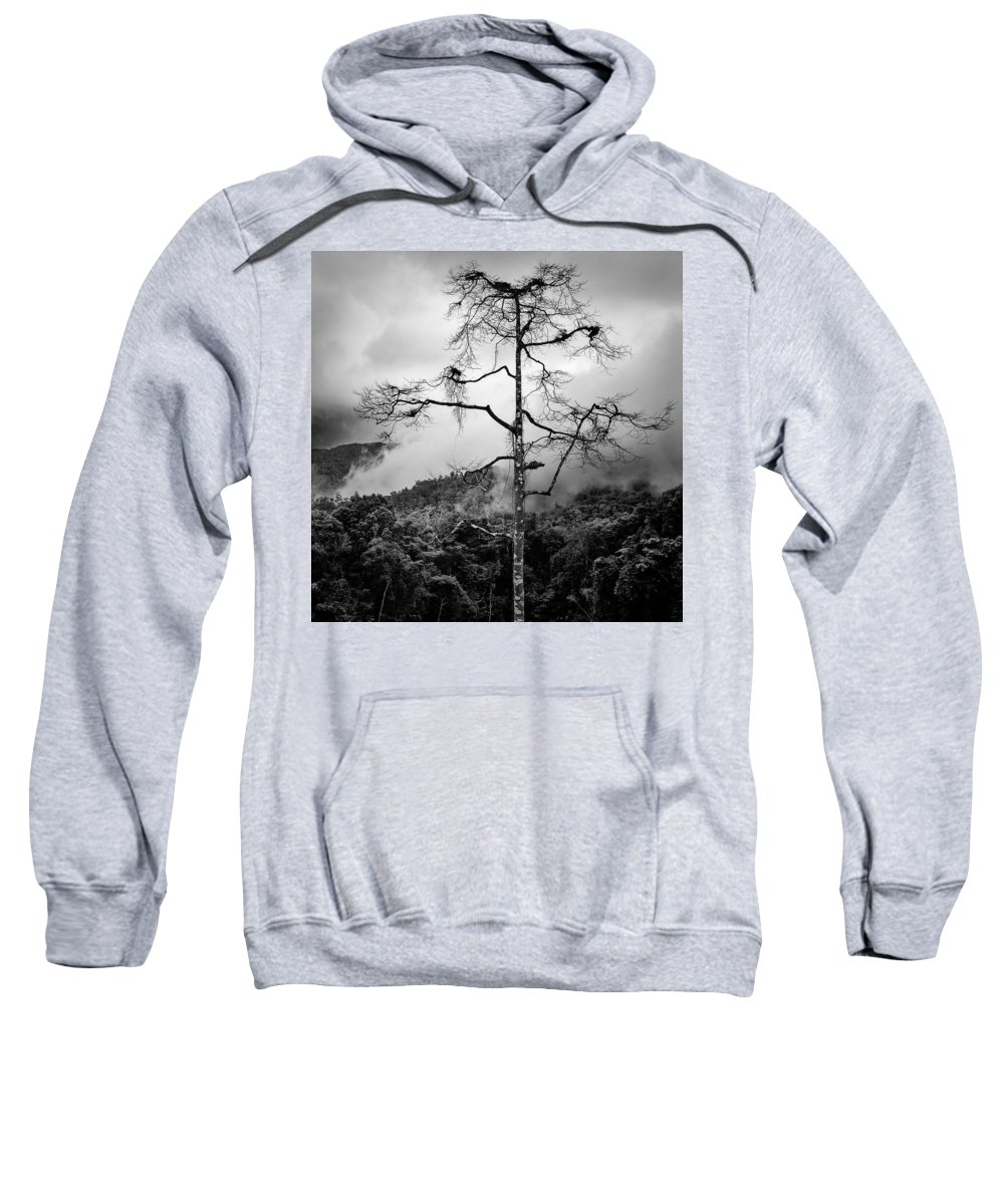 Cameron Highlands Sweatshirt featuring the photograph Solitary Tree by Dave Bowman